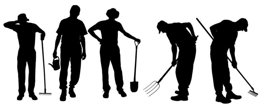 Vector silhouette of gardener.