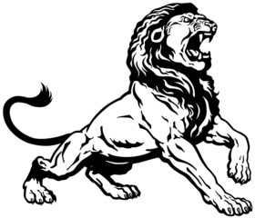 angry lion black white