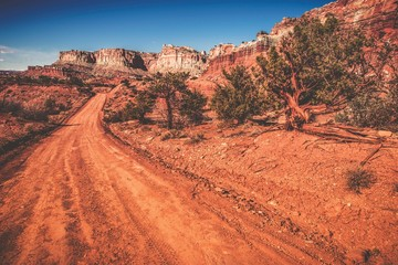 Wall Mural - Utah Wilderness Road