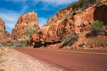 Wall Mural - Zion Park Road