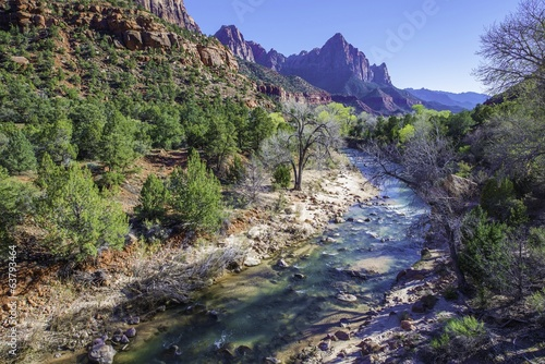 Wall mural Spring in Zion National Park