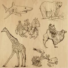 Animals around the World (set no. 16) - vector set, hand drawn