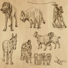 Animals around the World (set no. 9) - vector set, hand drawn