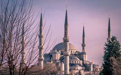 Evening at Blue mosque