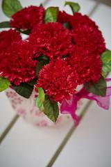 Carnations