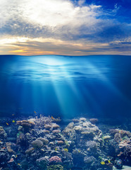 sea or ocean underwater life with sunset sky