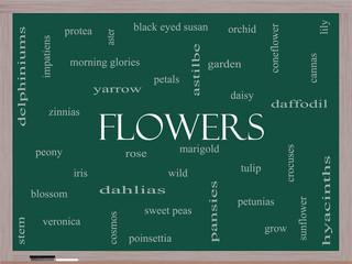 Flowers Word Cloud Concept on a Blackboard