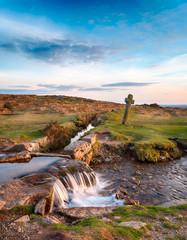 Fototapete - Dartmoor National Park