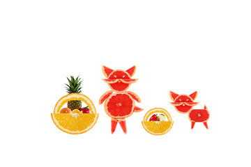 Healthy eating. Mother cat with baby made ??of grapefruit