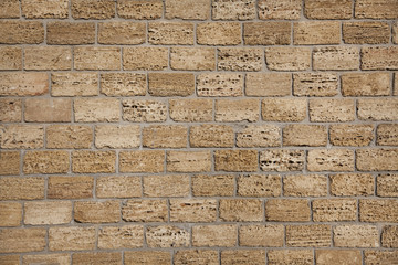 Wall of Crimean shell rock