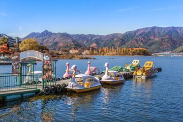 Swan boats at Lake Kawaguchiko in Japan