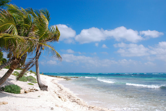 Beach at Akumal, Yucatan