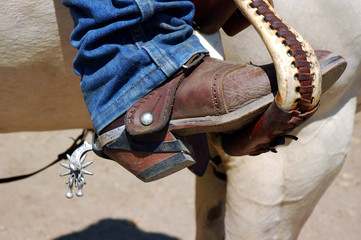 Boot and Spur in Stirrup