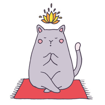 Vector yoga cat - hand drawn illustration, sketch