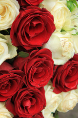 Red and white roses in a wedding arrangement