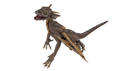 Printed kitchen splashbacks Dragons ドラゴン