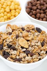 granola with raisins, sunflower seeds, various breakfast cereals