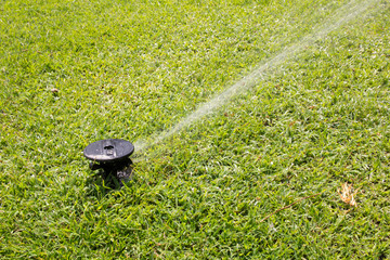 Sprinkler watering