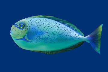 Blue tropical fish. Vector illustration