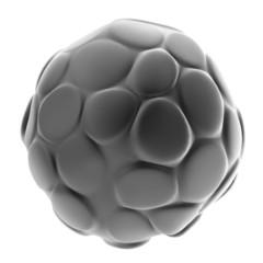 realistic 3d render of morula