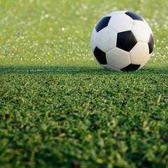 soccer ball on green grass sport game