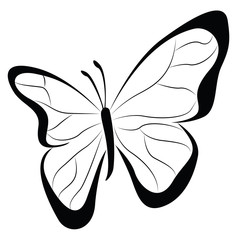 Contour Butterfly