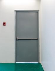 Emergency exit door with fire alarm button