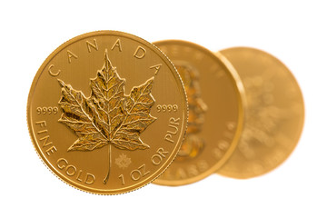 Canadian Gold Maple Leaf one ounce coins