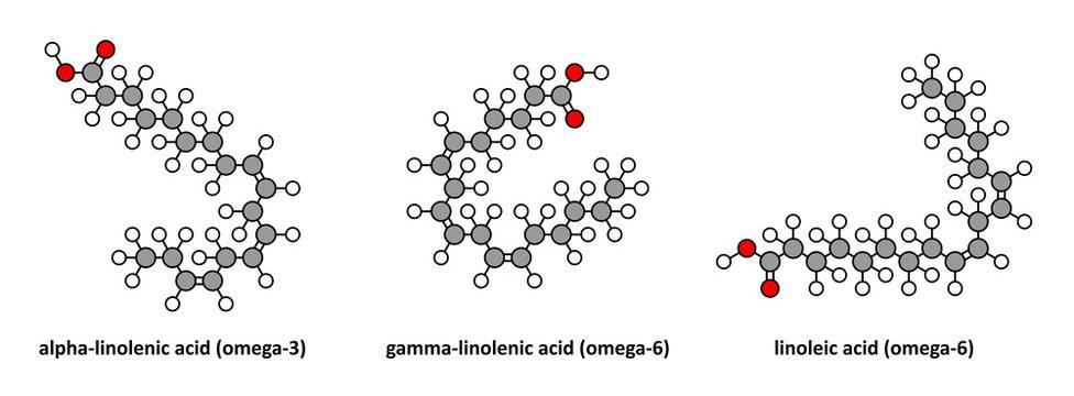Alpha-linolenic (omega-3, ALA), gamma-linolenic (omega-6), ...
