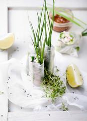 Fresh spring rolls on a white background