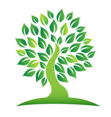 Green tree with leafs logo vector