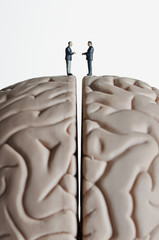 Business figurines placed on a brain model
