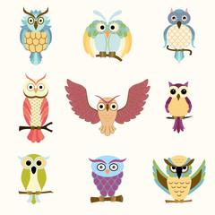 Set of nine cartoon colorful owls