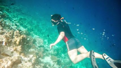 Wall Mural - Snorkeler diving swimming under water.