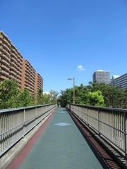 光ヶ丘の歩道橋