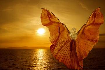 Woman with butterfly wings flying on fantasy sea sunset Fotomurales