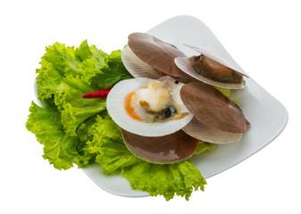Raw fresh scallops