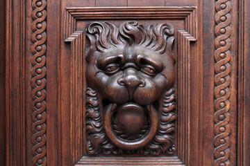 Lion on a wooden door