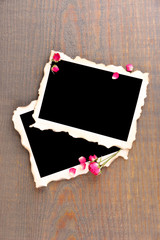 Blank photo paper and beautiful pink dried roses