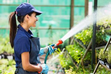female nursery worker watering plant