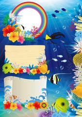熱帯魚 珊瑚 枠