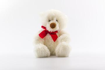 Classic white teddy bear.