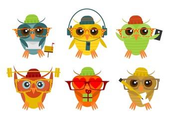 Hipster owl set