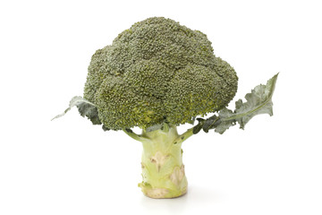 Broccoli vegetable isolated on the white background