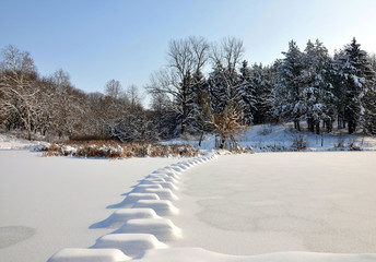 Lake in the park in winter