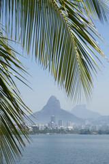 Lagoa Rio de Janeiro Brazil Scenic Skyline Palm Tree