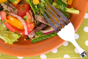 Beef salad on plate on tablecloth
