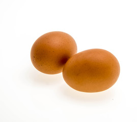 several chicken eggs on a white background