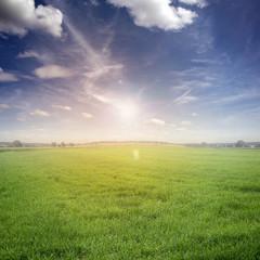 Fototapete - Landschaft / Himmel / Gras