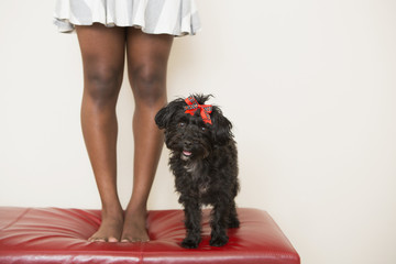 A young girl and her small black dog standing on a stool.